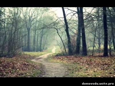 Стих дорога тропа
